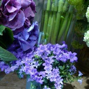 fleuriste-puyricard (2)